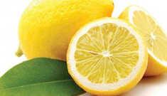 Tudo sobre o Limão Siciliano!