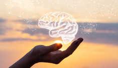 Nootrópicos para Melhorar a Performance do Cérebro