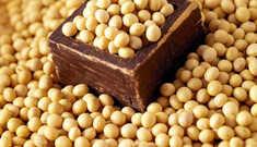 Você considera a soja um alimento saudável?
