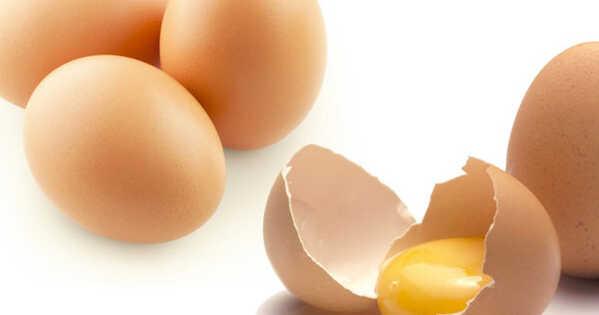 Ovo: 9 Motivos para Incluir esse Super Alimento em sua Dieta!