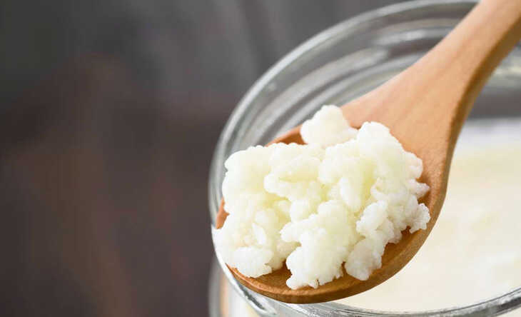 Kefir: Conheça esse Iogurte Muito Saudável