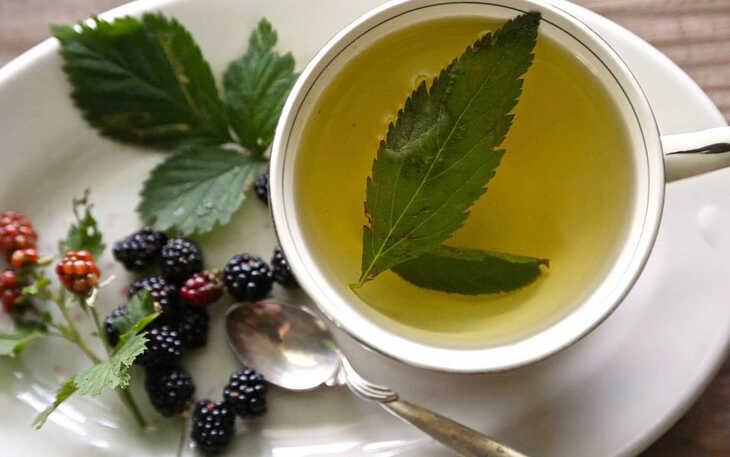 Chá das Folhas de Amora