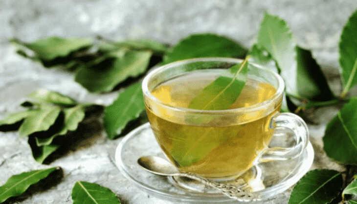 Chá de Espinheira-Santa: Santo remédio para o trato digestivo!