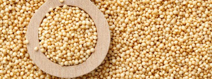Amaranto: Grão de Altíssimo Valor Nutricional