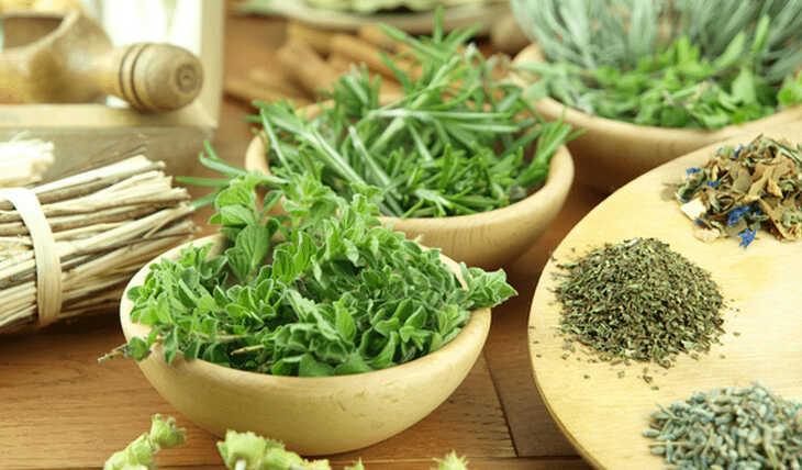10 Hábitos Saudáveis para sua Vida