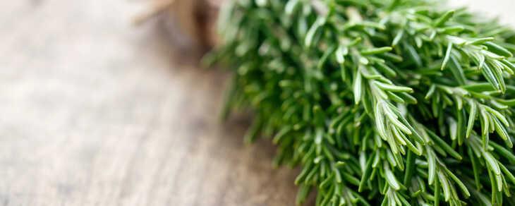 Guia Completo para o Crescimento e Fortalecimento Capilar