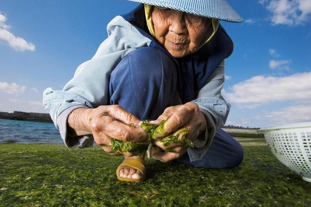 Segredos da Longevidade: Como viver mais de 100 anos?