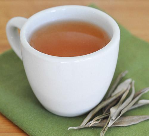 Você já experimentou o chá de oliveira?