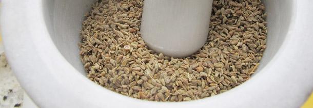Chá de Erva-Doce: Delicioso Aliado contra a Má Digestão